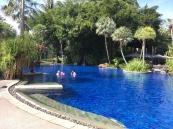 the-slate-pool